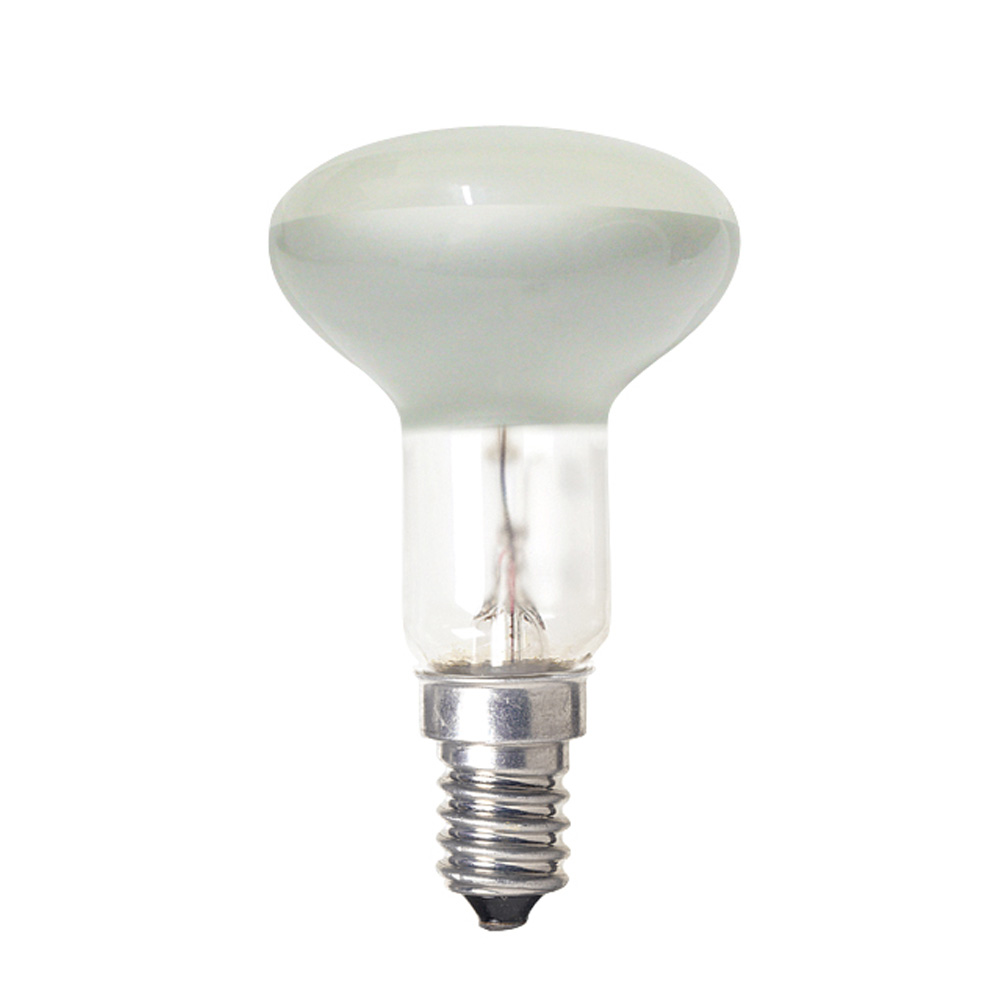Shop Light With Reflector: Reflector 30W R39 Lamp
