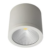 Neo 25 Watt Dimmable Surface Mounted LED Downlight White / White - 20691